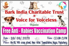 Free anti-rabies vaccination camp for pet dogs and stray dogs